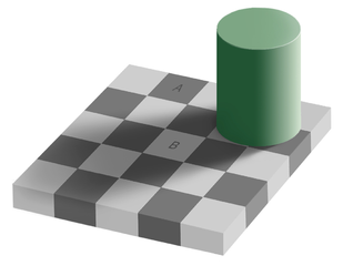 309px-Grey_square_optical_illusion