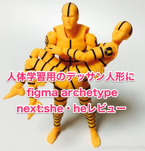 figma archetype next:she・heレビュー